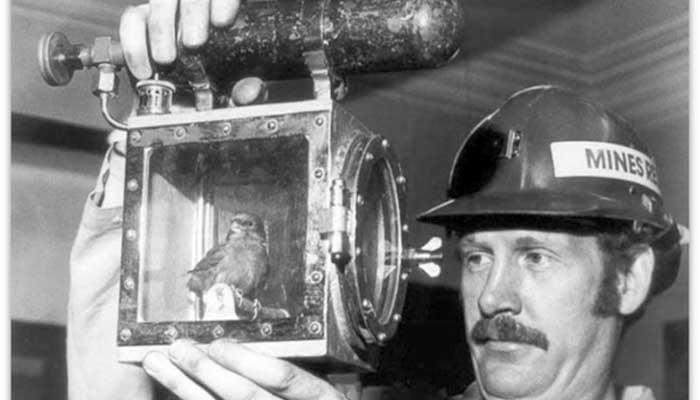 A evolução da detecção de gás