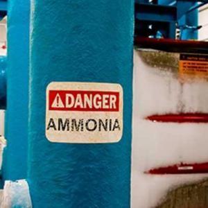 Quais são os principais perigos da amônia?